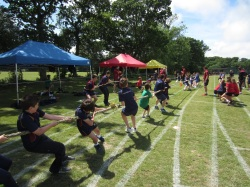 Ballard School Sports Day Tug of War